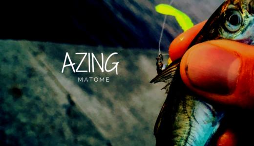 アジングの釣り方を徹底解説!組むべき仕掛けや基礎知識まで、ここを読めば「今すぐアジングを始められる」ぐらいの勢いでまとめます