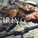 ガシラをルアーで釣る!(ライト)ガシリングを楽しむための仕掛けと釣り方を徹底解説!
